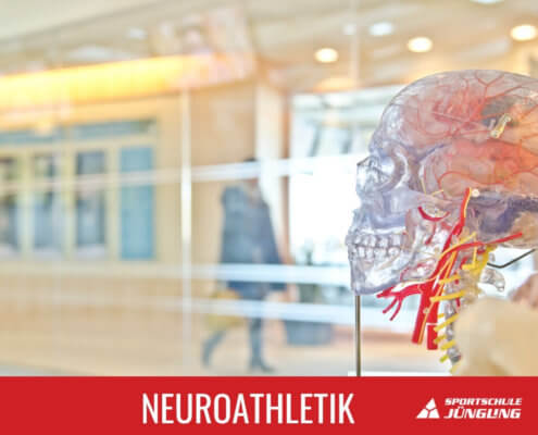 Neuroathletik